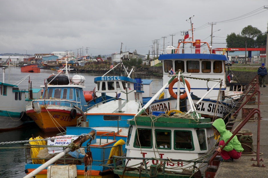 Fishing boats in Ancud