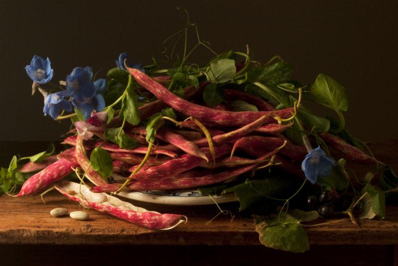 Cranberry Beans GG ©Paulette Tavormina