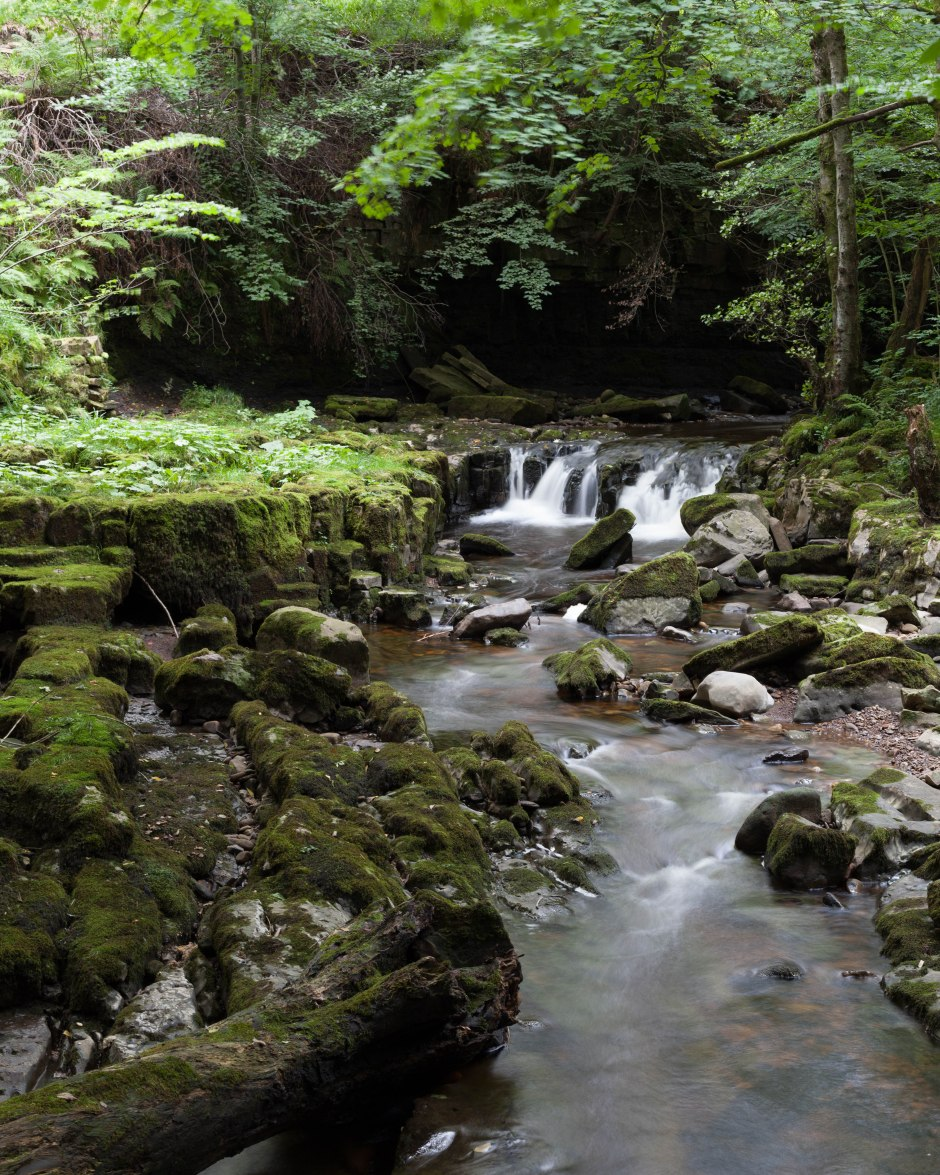 20150915-Stags Fell -101