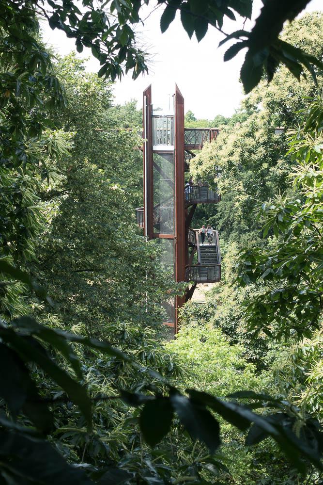 Kew-160707- 18