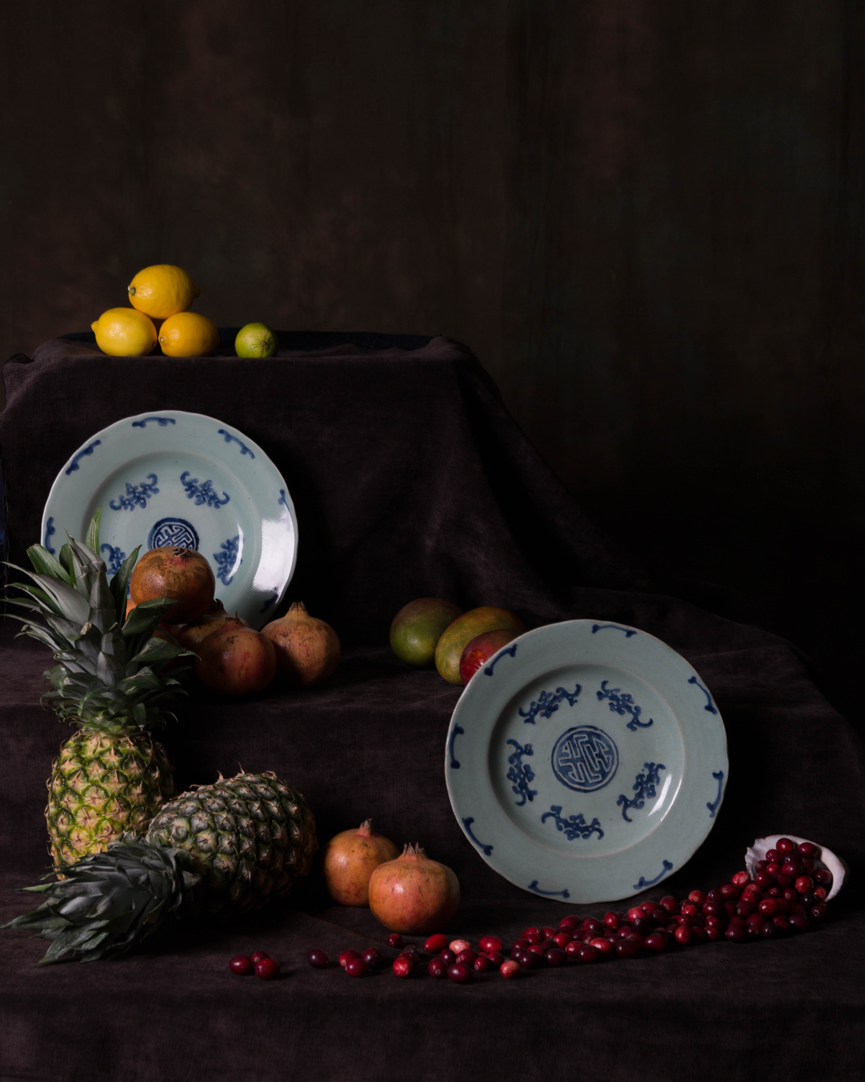 20161219-dutch-still-life-fruit-012