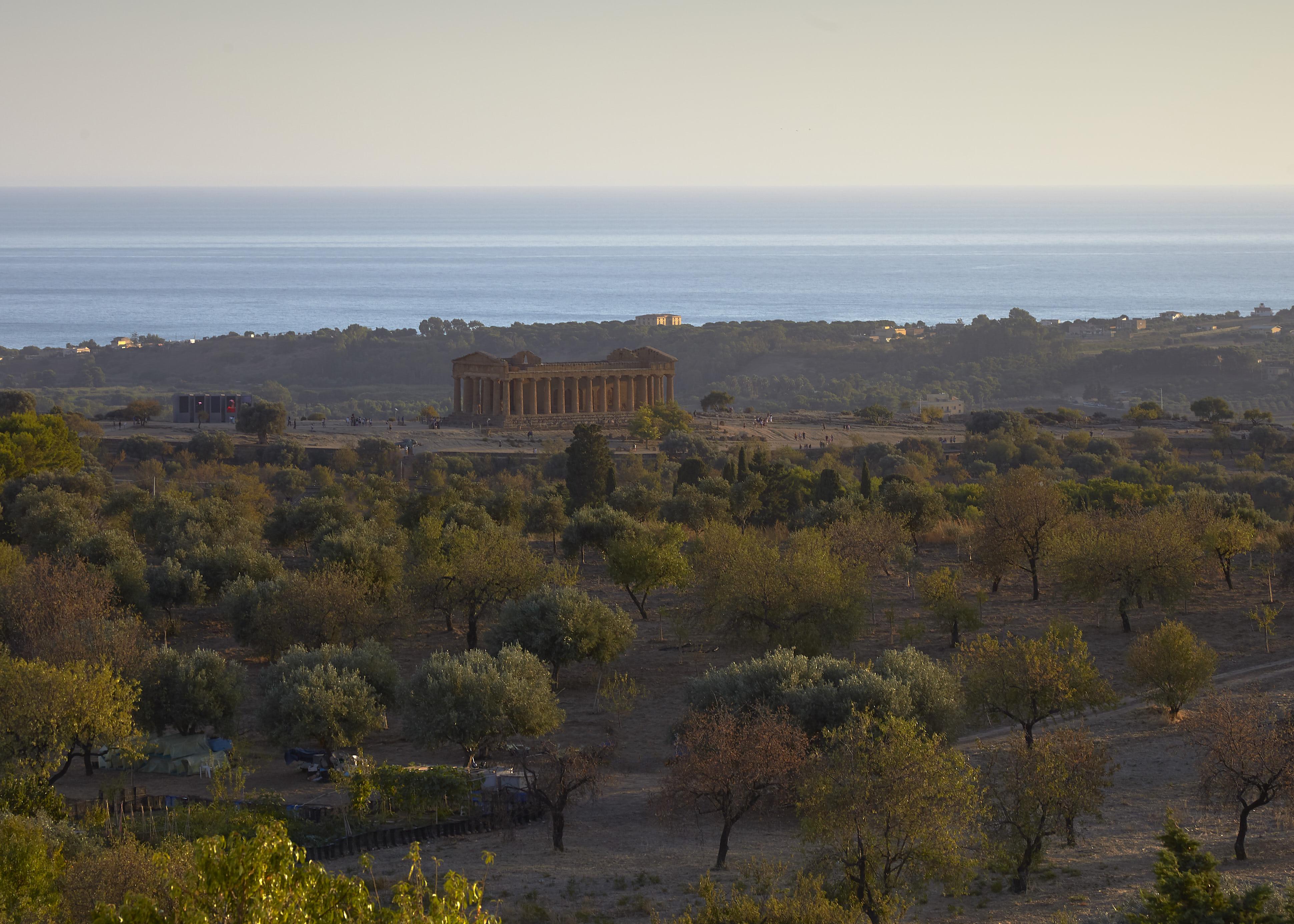 Sicily 2139